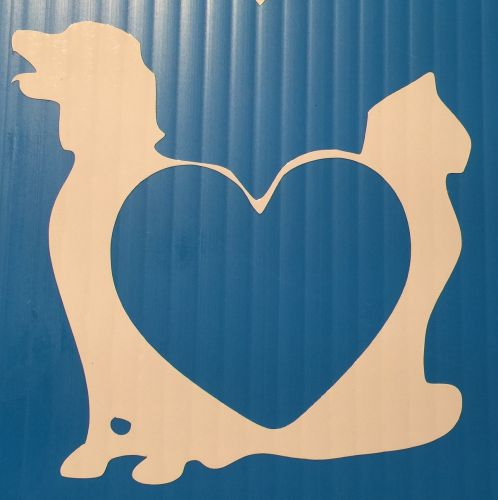 Dog & Cat Forming Heart