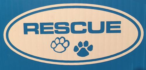 Rescue Circle with Paws